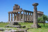 Paestum originally Posidonius - Greek colony — Foto Stock