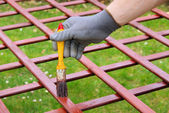 Paint the fence — Stock Photo