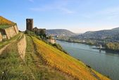 Ehrenfels — Stock Photo