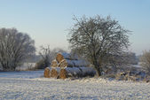 Bale of straw in snow — Stock Photo