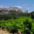 Les Baux-de-Provence — Stock Video #40017095