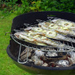 Stock Photo: Grilling trout