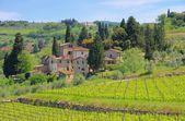 Panzano in Chianti — Stock Photo