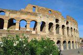 Rom Colosseum — Stock Photo