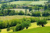 Emilia landscape  — Zdjęcie stockowe