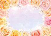 Roses and cherry flowers frame — Stock Photo