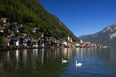 Village of Hallstatt, Salzkammergut — Stock Photo
