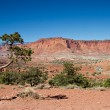 Panorama point of Capitol Reef - Stock Photo