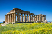 Greek Temple at Selinunte — Stock Photo