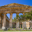 Ancient Greek Temple of Segesta — Stock Photo