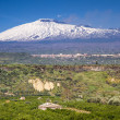 Panorama of the snow capped Etna — Stock Photo