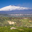 Stock Photo: Panoramof snow capped Etna