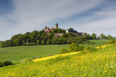 Meadows in spring in front of castle Ronneburg — Stock Photo