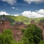 Ruins of Castle Heidelberg in spring — Stock Photo #45744905