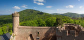 Panorama of Castle Auerbach in spring — Stock Photo