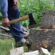 Stock Video: Fire wood