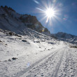 Stock Photo: Mountain road shined with the bright sun