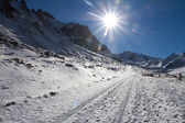 Mountain road shined with the bright sun — Stock Photo