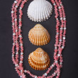 Stock Photo: Coral beads and seashell