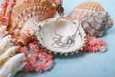 Jewelry pearls and corals — Stock Photo