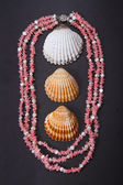 Coral beads and seashell — Stock Photo
