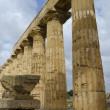Stock Photo: Old Greek Temple in Selinunte