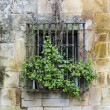 Stock Photo: Latticed Window. Santillana