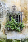 Latticed Window. Santillana — Stock Photo