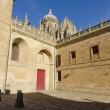 Old Cathedral. Salamanca — Stock Photo