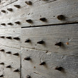 Spikes Door — Stock Photo