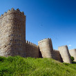 Defensive Walls. Avila — Stock Photo