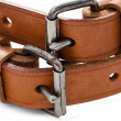 Buckles — Stock Photo