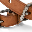 Two Buckles — Stock Photo