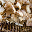 Dried Hydrangea — Stock Photo