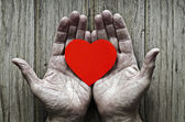 Paper heart in the hands of an elderly — Stock Photo