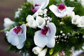 свадебный букет цветов — Стоковое фото