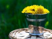 Malá plechovka s pampelišky na pozadí trávy — Stock fotografie