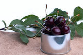 Lots of fresh and juicy cherries on old table — Stock Photo