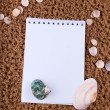 Copyspace blank paper on white beach sand summer starfish and and shells — Stok fotoğraf