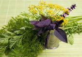 Rosemary spice in closeup — Stock Photo