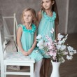 Stock Photo: 2 little girls in white dresses sitting