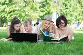 Group of young student using laptop together — Stock Photo
