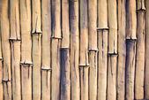 Bamboo  fence  background wall — Stockfoto