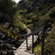 Small hiking trail - Stock Photo