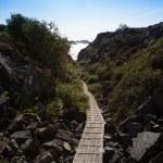 Small hiking trail 2 — Stock Photo