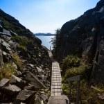 Small hiking trail 3 — Stock Photo
