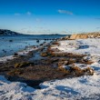 Stock Photo: Coast in winter