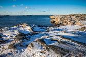 Zima zimny dzień — Zdjęcie stockowe