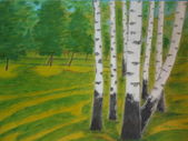 Birches painting nature — Stock Photo