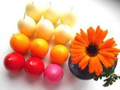 Colored egg candles and orange flower beautiful background — Stock Photo